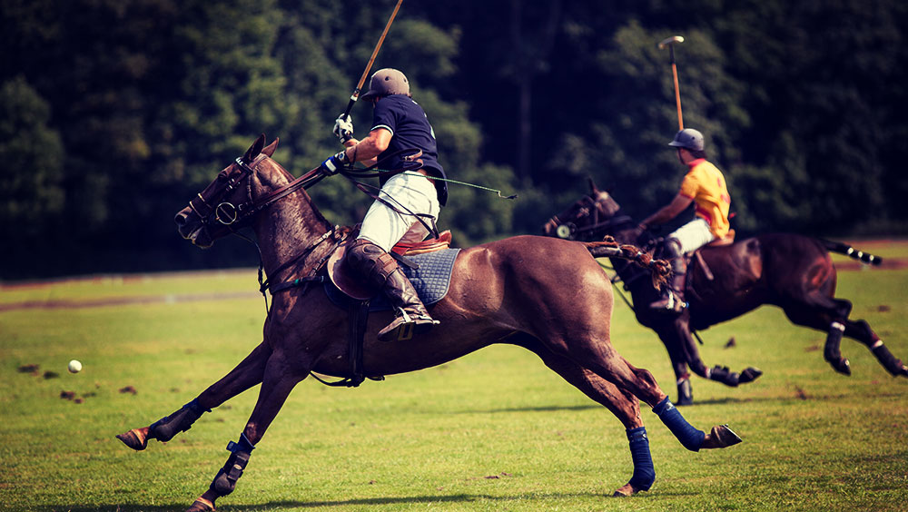 Sports | Polo, Royal Windsor Cup, June, London, UK