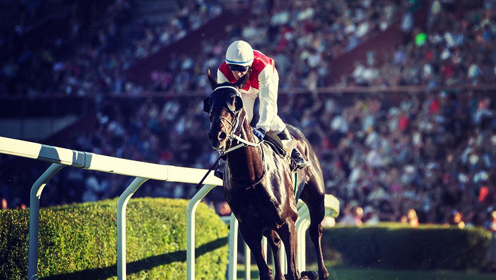 Sports   Equestrian, Pegasus World Cup, January, Gulfstream Park, Florida