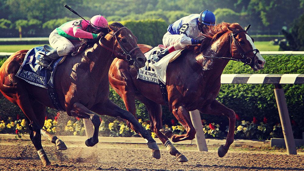 Sports   Equestrian, Belmont Stakes, June, Belmont Park, Elmont, New York, USA
