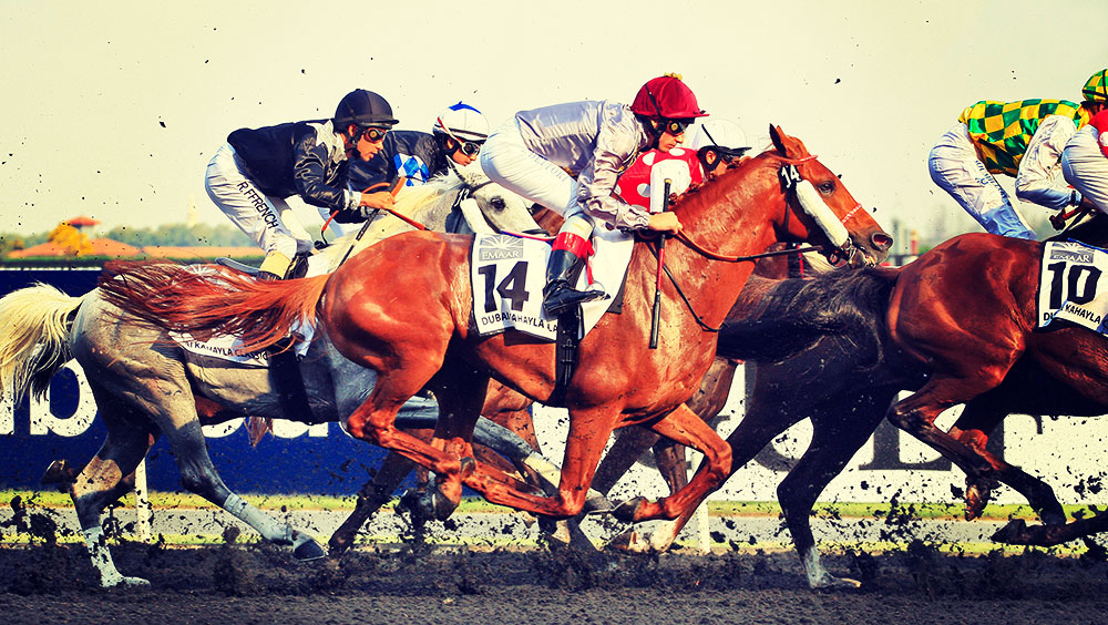 Sports | Equestrian, Dubai World Cup, Meydan Racecourse, March, Dubai