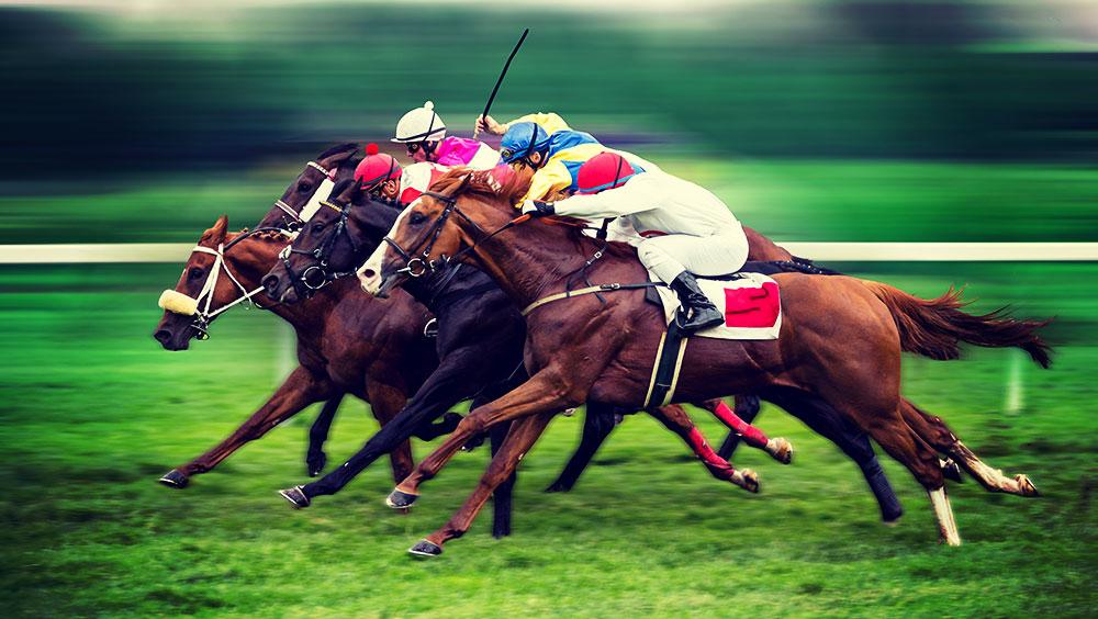 Sports | Equestrian, Qatar Goodwood Festival, Goodwood Racecourse, Chichester, UK