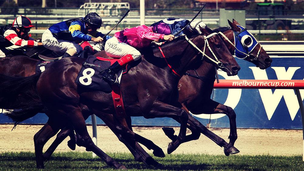 Sports | Equestrian, Melbourne Cup, November, Flemington Racecourse, Melbourne, Australia