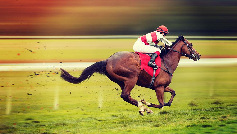 Sports | Equestrian, Prix de l'Arc de Triomphe, October, Longchamp Racecourse, Paris, France