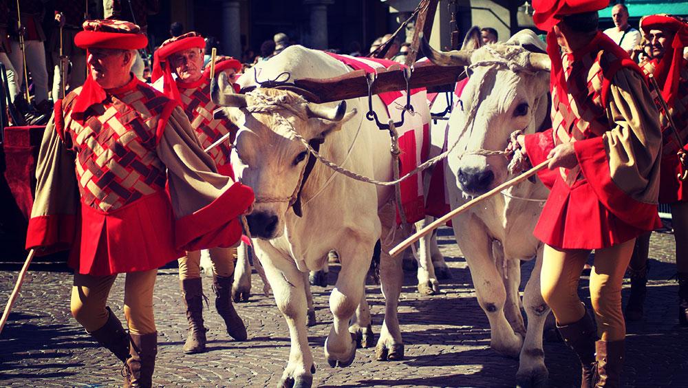 Sports   Equestrian, Palio dell'Assunta (Palio di Siena), August, Siena, Italy