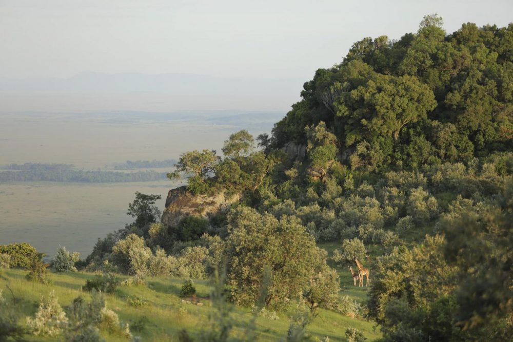 Explore unique Kenyan safari accommodation on the Great Rift Valley at Angama Mara